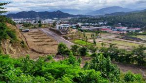 Hoang Phu 10