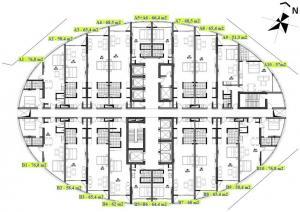 main-area-layout